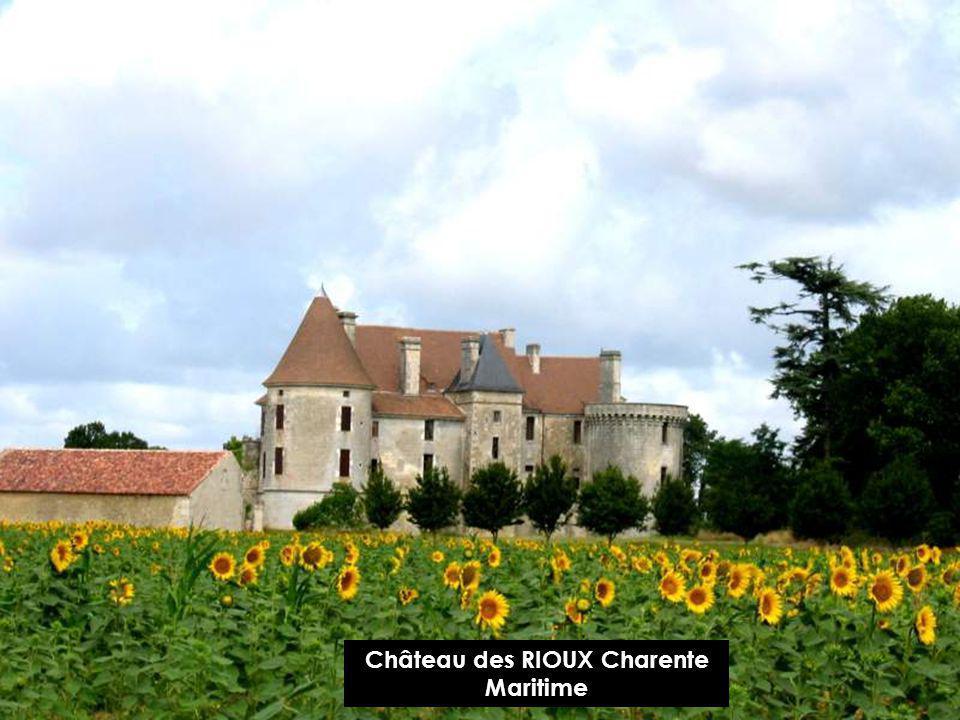 Château de SURGÈRES Charente Maritime