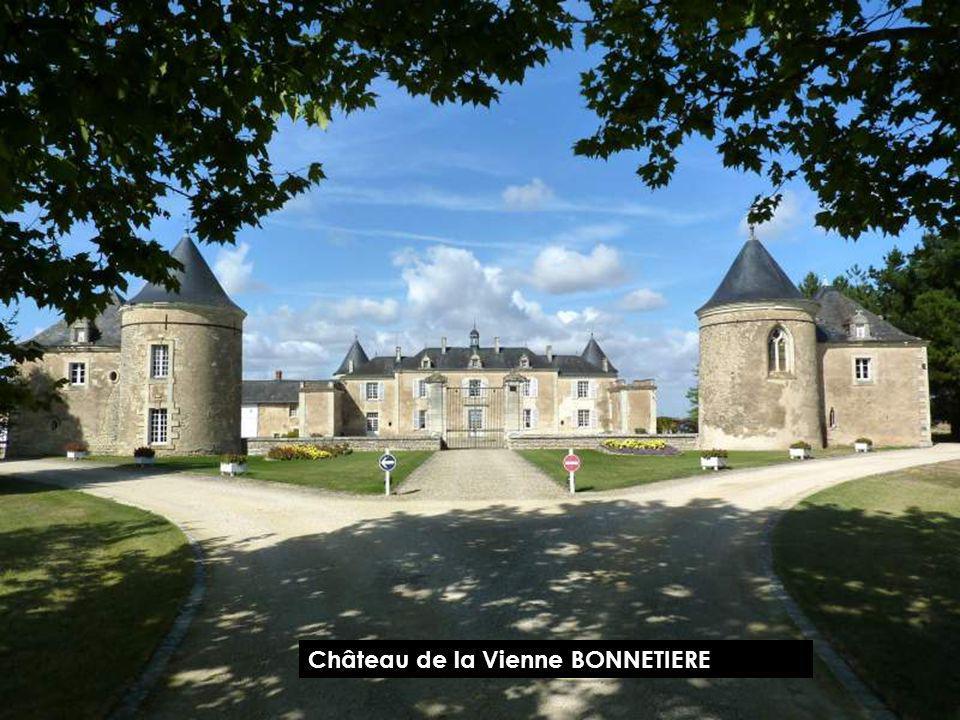 Château de CURZAIT SUR VONNE Vienne