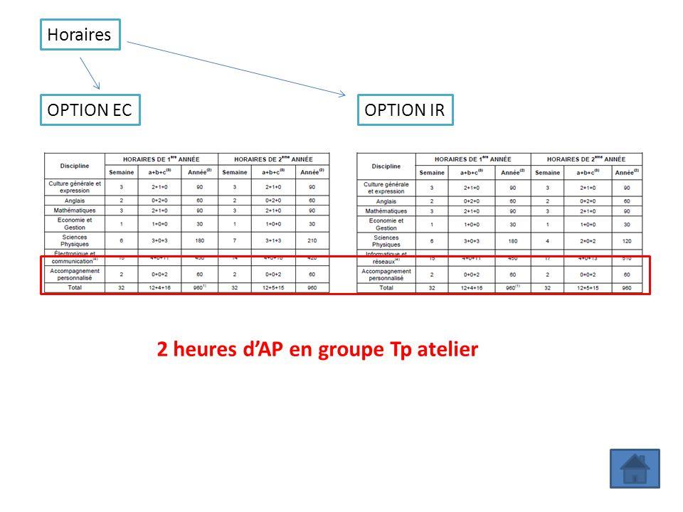 OPTION ECOPTION IR 2 heures dAP en groupe Tp atelier Horaires