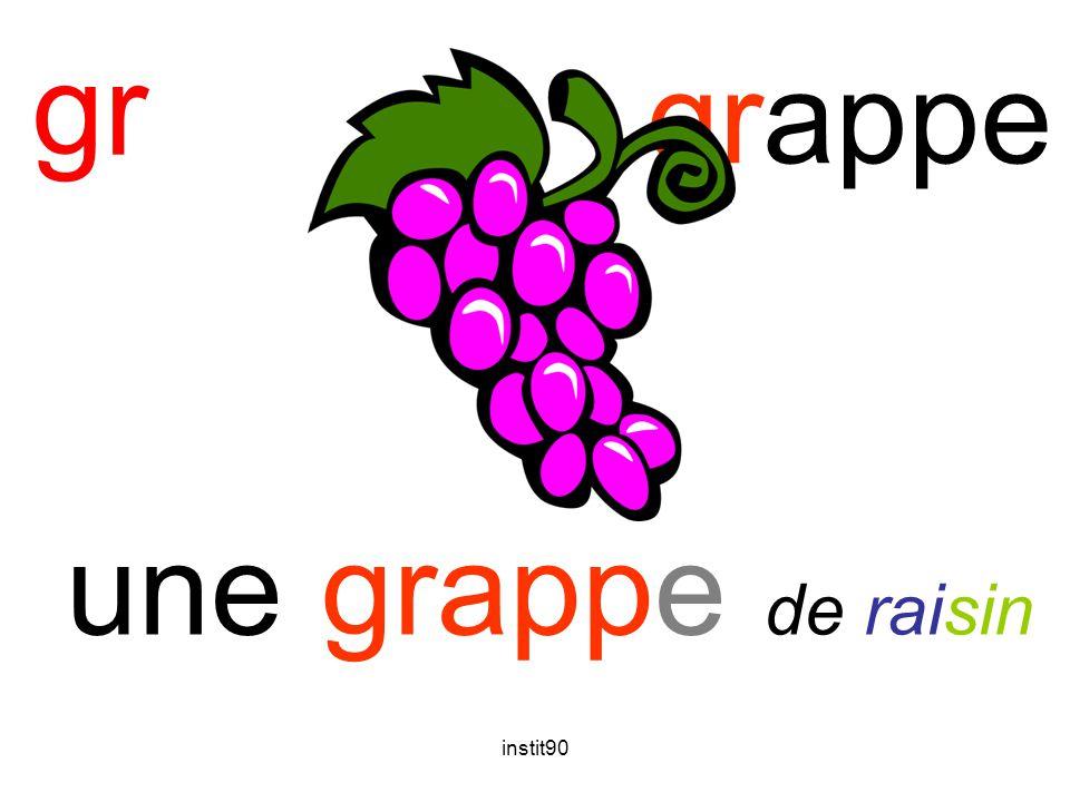 instit90 gr grappe une grappe de raisin