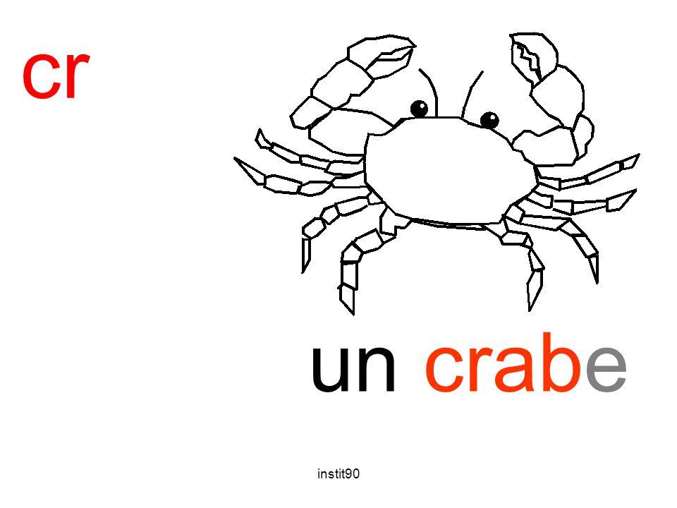 instit90 cr crabe un crabe