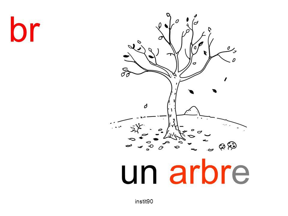 instit90 br arbre un arbre