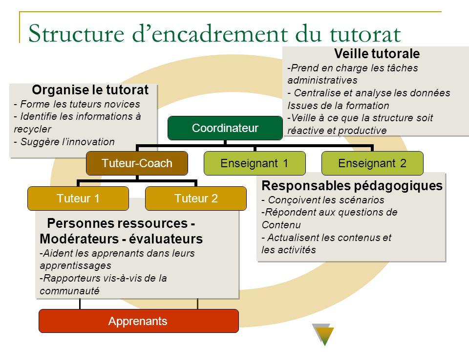 Organise le tutorat - Forme les tuteurs novices - Identifie les informations à recycler - Suggère linnovation Organise le tutorat - Forme les tuteurs