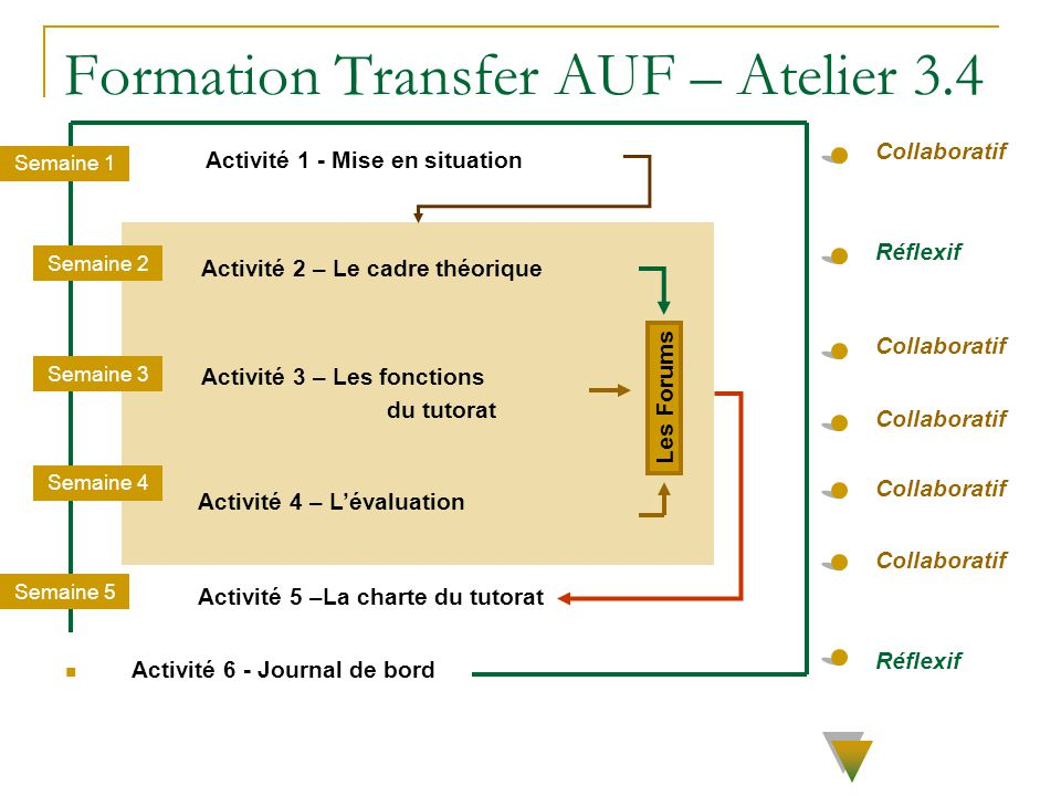 Formation Transfer AUF – Atelier 3.4 Activité 1 - Mise en situation Semaine 1 Semaine 5 Activité 2 – Le cadre théorique Les Forums Activité 3 – Les fo