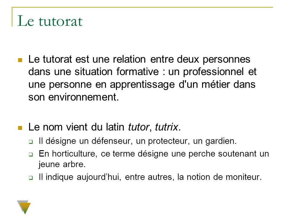 Le tutorat Le tutorat est une relation entre deux personnes dans une situation formative : un professionnel et une personne en apprentissage d'un méti
