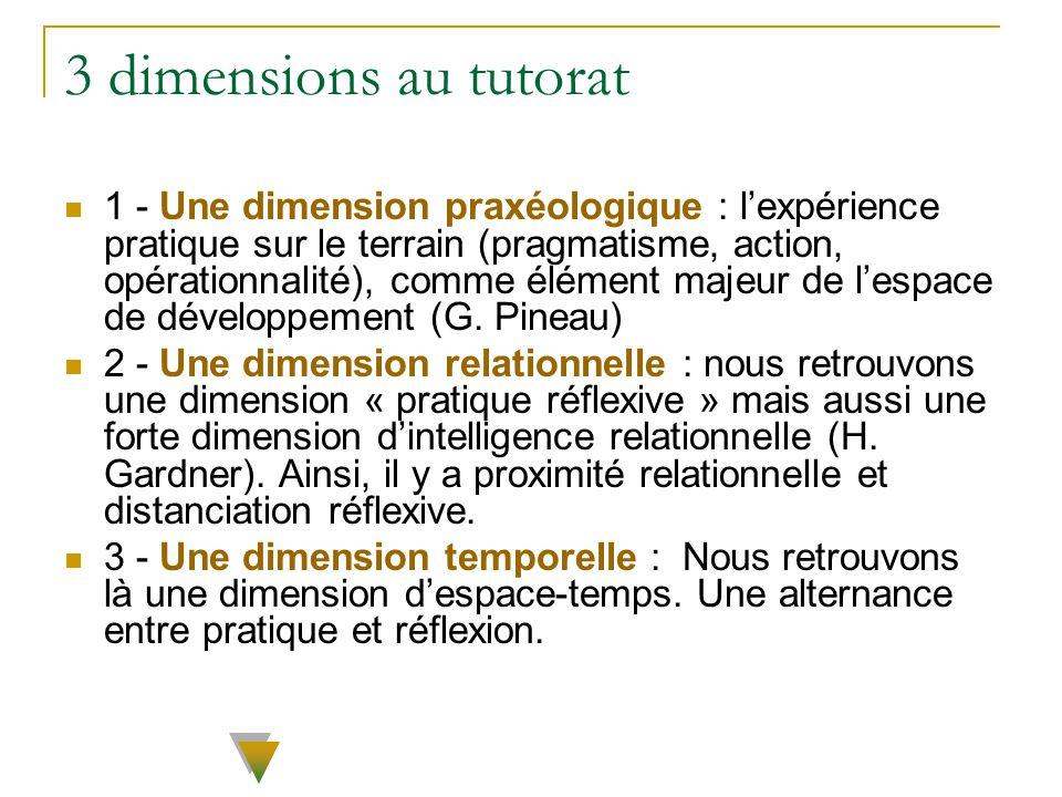 3 dimensions au tutorat 1 - Une dimension praxéologique : lexpérience pratique sur le terrain (pragmatisme, action, opérationnalité), comme élément ma