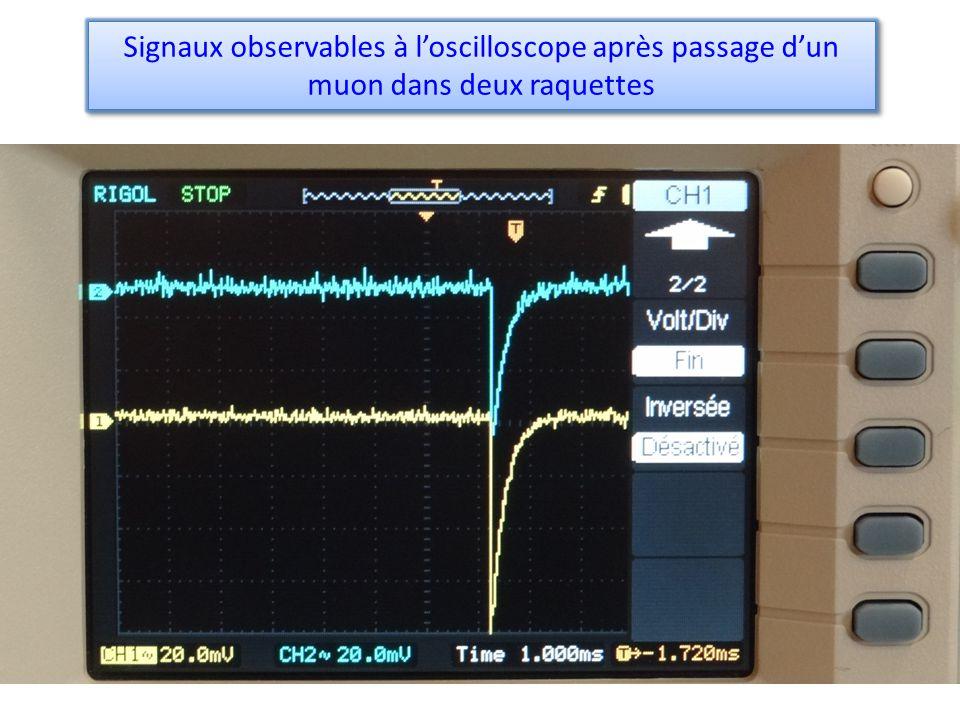 Signaux observables à loscilloscope après passage dun muon dans deux raquettes