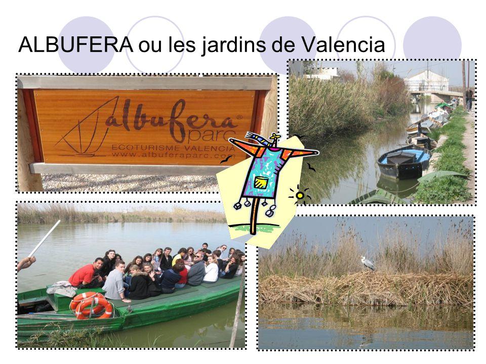 ALBUFERA ou les jardins de Valencia