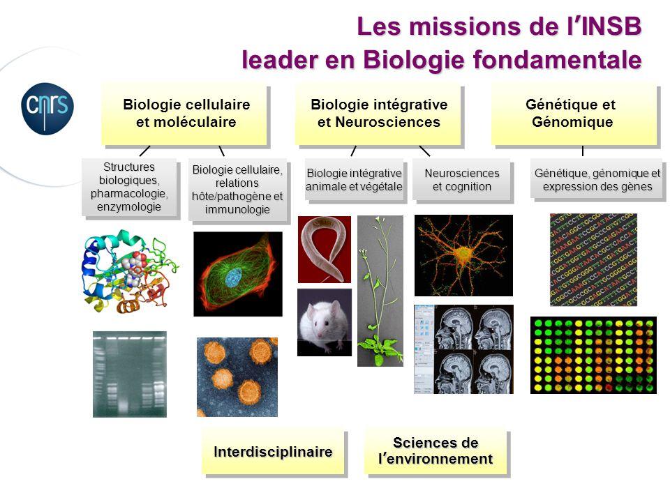 Les missions de lINSB leader en Biologie fondamentale Structures biologiques, pharmacologie, enzymologie Biologie intégrative et Neurosciences Génétiq