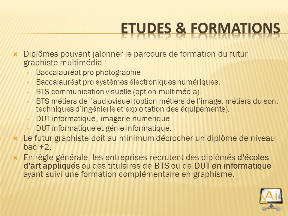 Diplômes pouvant jalonner le parcours de formation du futur graphiste multimédia : Baccalauréat pro photographie Baccalauréat pro systèmes électroniqu