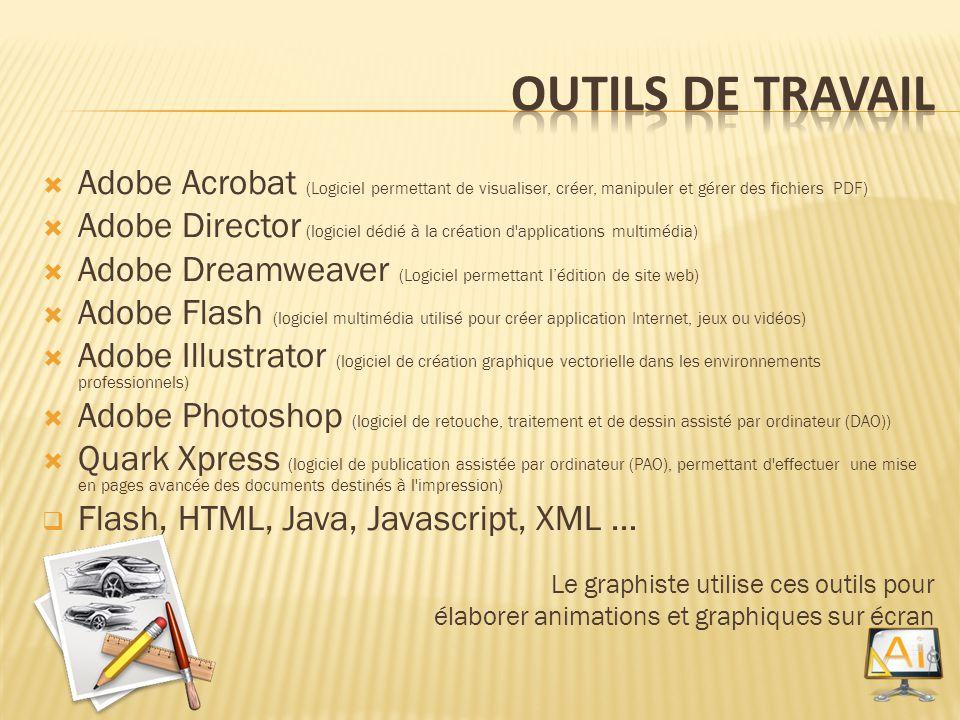 Adobe Acrobat (Logiciel permettant de visualiser, créer, manipuler et gérer des fichiers PDF) Adobe Director (logiciel dédié à la création d'applicati