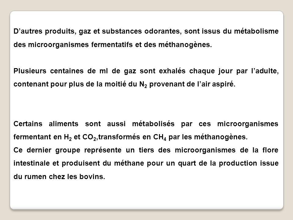 Dautres produits, gaz et substances odorantes, sont issus du métabolisme des microorganismes fermentatifs et des méthanogènes. Plusieurs centaines de