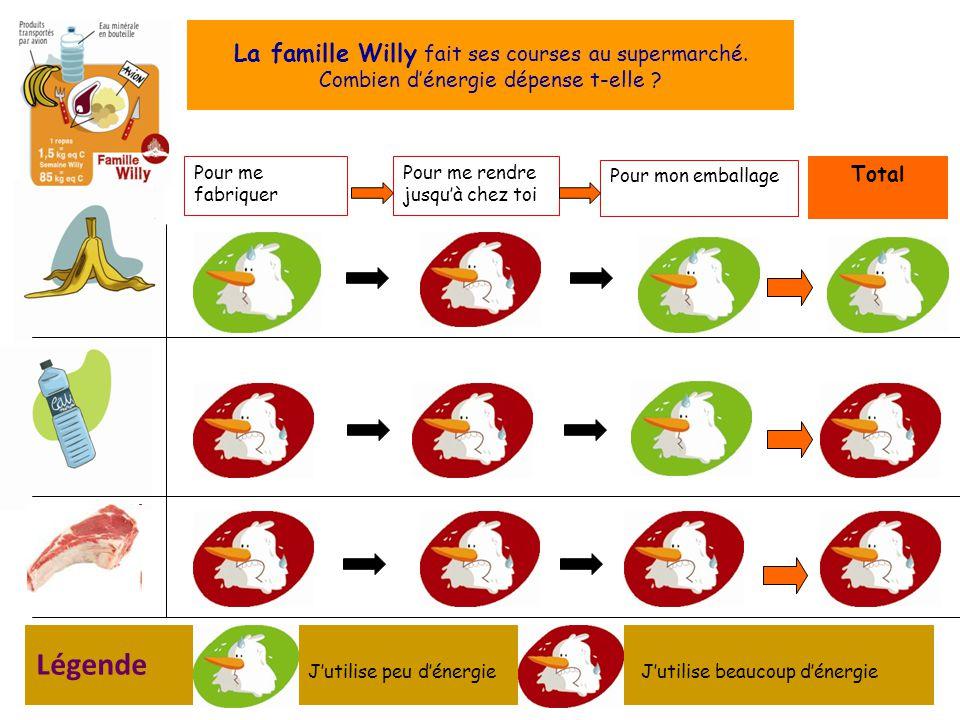 Pour me fabriquer Pour mon emballage Total Pour me rendre jusquà chez toi La famille Willy fait ses courses au supermarché.