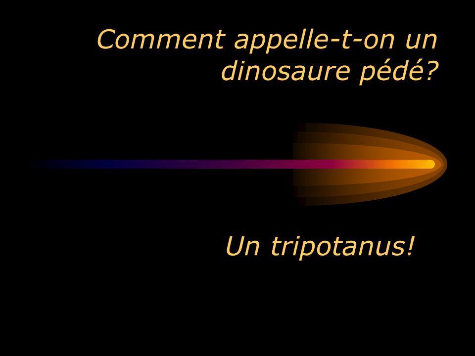 Comment appelle-t-on un dinosaure pédé? Un tripotanus!