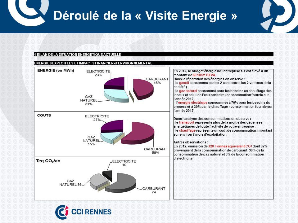 Déroulé de la « Visite Energie » 1 BILAN DE LA SITUATION ENERGETIQUE ACTUELLE ENERGIES EXPLOITEES ET IMPACTS FINANCIER et ENVIRONNEMENTAL En 2012, le budget énergie de lentreprise X sest élevé à un montant de 60 108 HTVA.