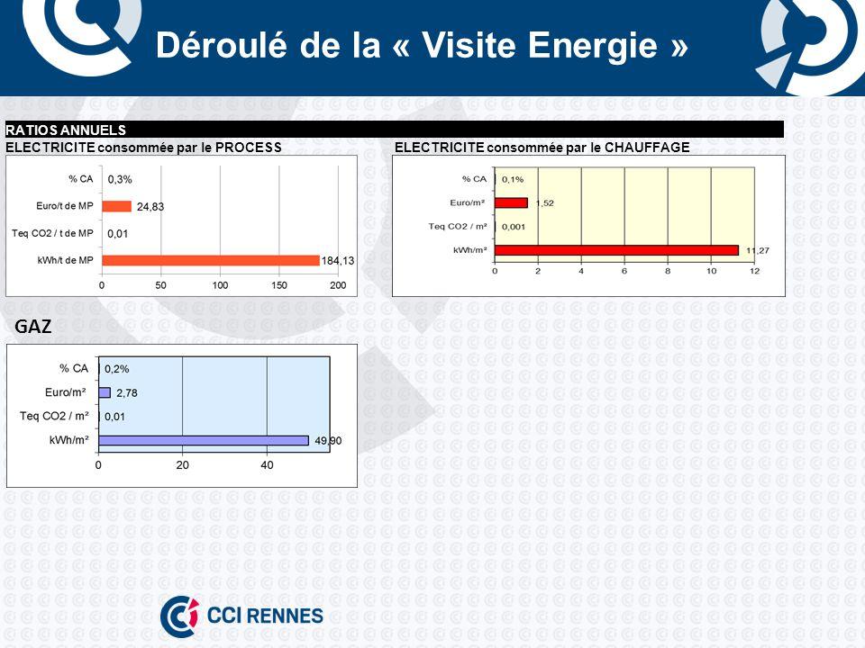Déroulé de la « Visite Energie » RATIOS ANNUELS ELECTRICITE consommée par le PROCESSELECTRICITE consommée par le CHAUFFAGE GAZ