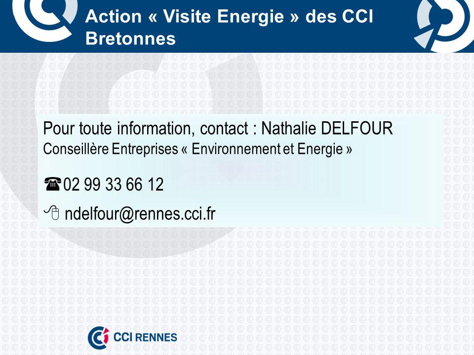 Action « Visite Energie » des CCI Bretonnes Pour toute information, contact : Nathalie DELFOUR Conseillère Entreprises « Environnement et Energie » 02 99 33 66 12 ndelfour@rennes.cci.fr