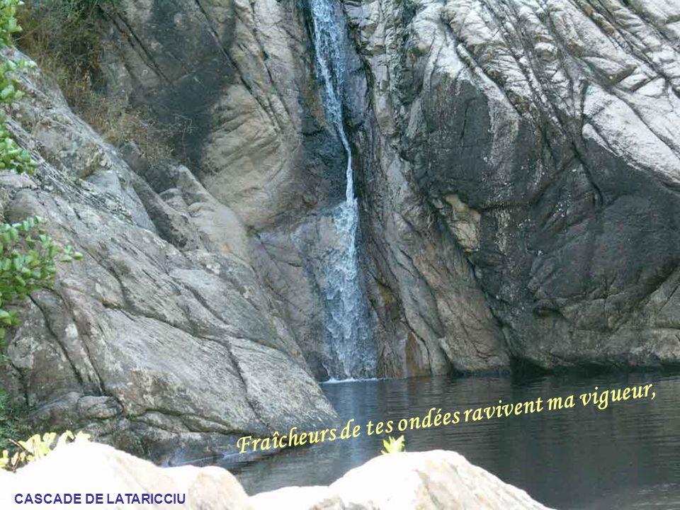 « Corsica ma belle, pardonne notre avidité, LEVER DU SOLEIL SUR CARAMONTINU