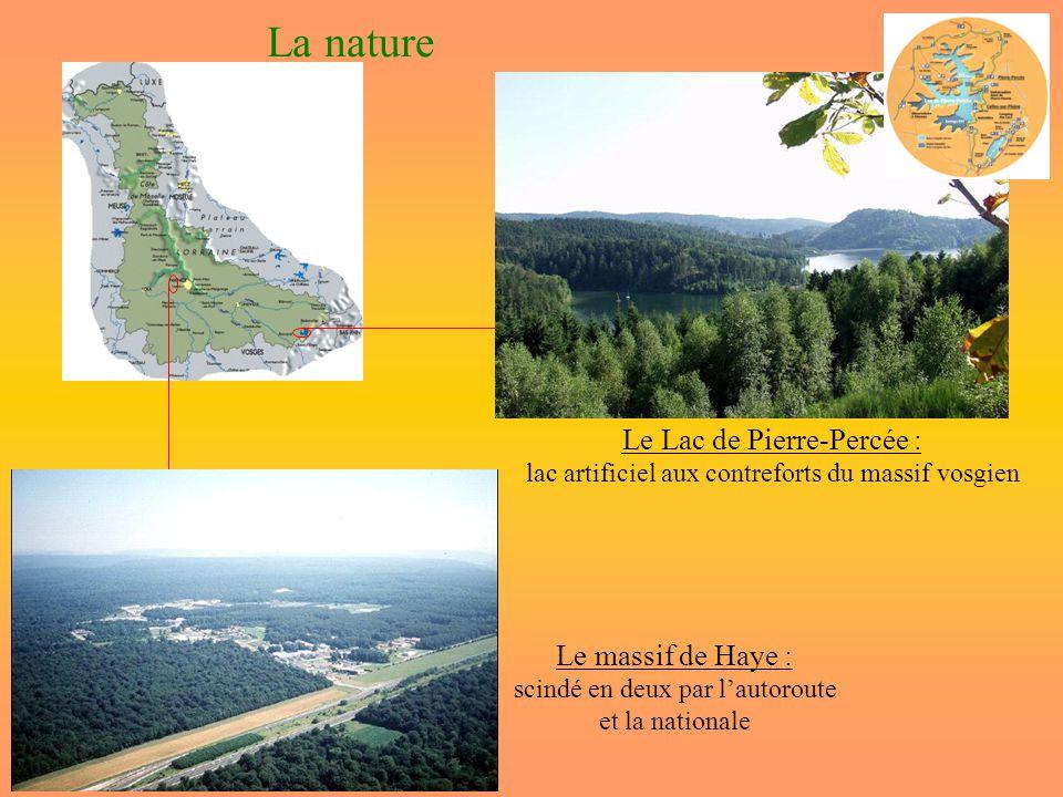 La nature Le Lac de Pierre-Percée : lac artificiel aux contreforts du massif vosgien Le massif de Haye : scindé en deux par lautoroute et la nationale