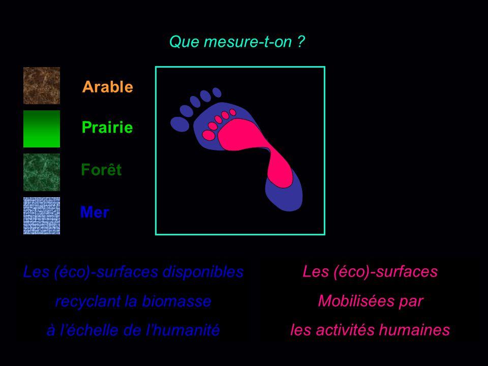 LPR 2006 - WWF LA TERRE - BIOSPHERE Forêts Prairies- Savanes Mers Déserts glaces 1 2 3