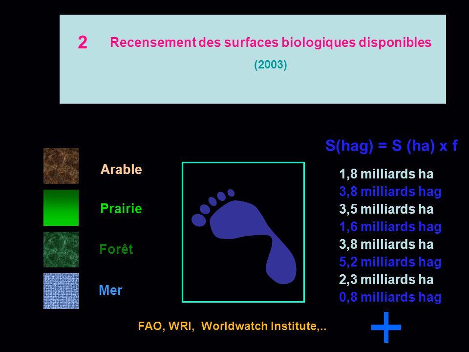 Arable Prairie Forêt Mer Bio capacité disponible par habitant? FAO, WRI, Worldwatch Institute,.. 2,11 hag /ha 1,35 hag /ha 0,35 hag /ha Unité de surfa