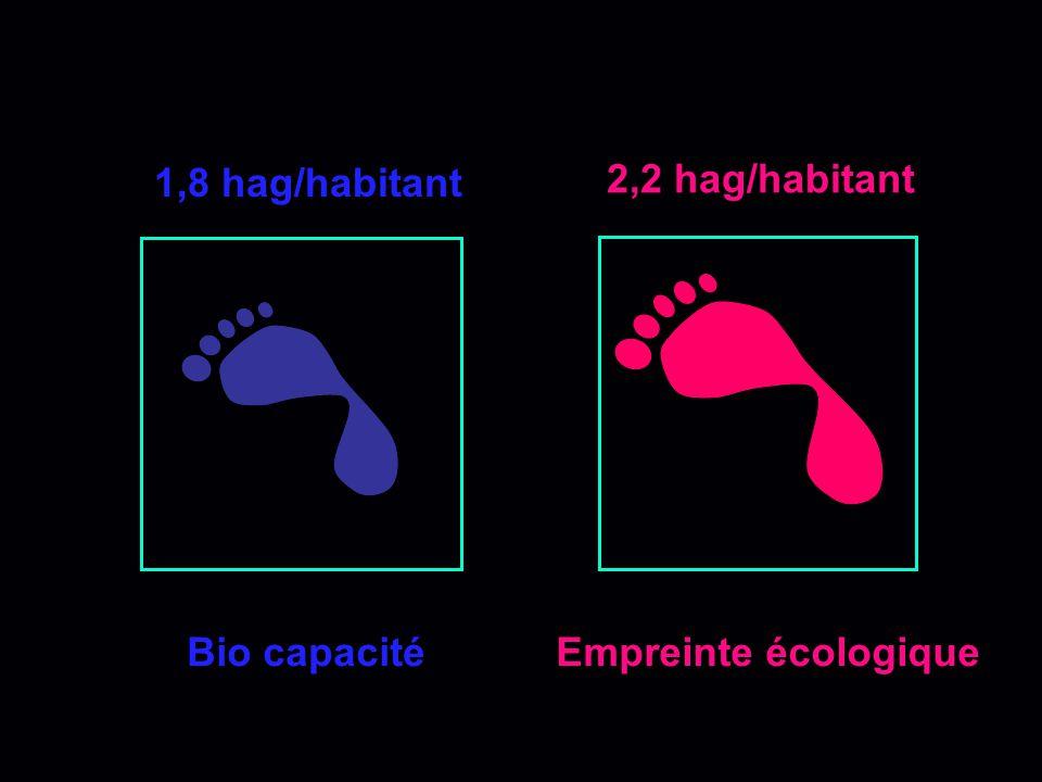 Surexploitation 1,8 hag/hab (2003) 2,2 hag/hab (2003) Surface x Bio productivité = Bio capacité (OFFRE) Population x Consommation x Intensité = Emprei