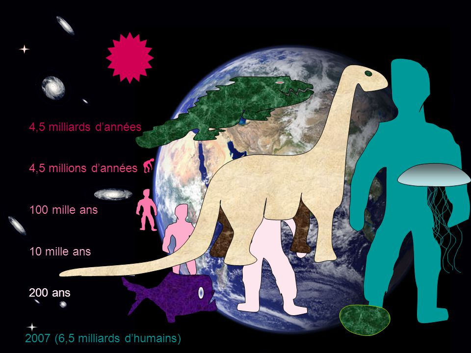 4,5 milliards dannées 4,5 millions dannées 100 mille ans 10 mille ans 200 ans 2007 (6,5 milliards dhumains)