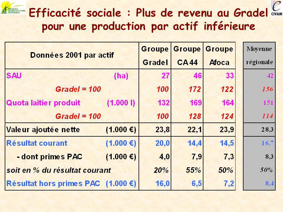 Efficacité sociale : Plus de revenu au Gradel pour une production par actif inférieure