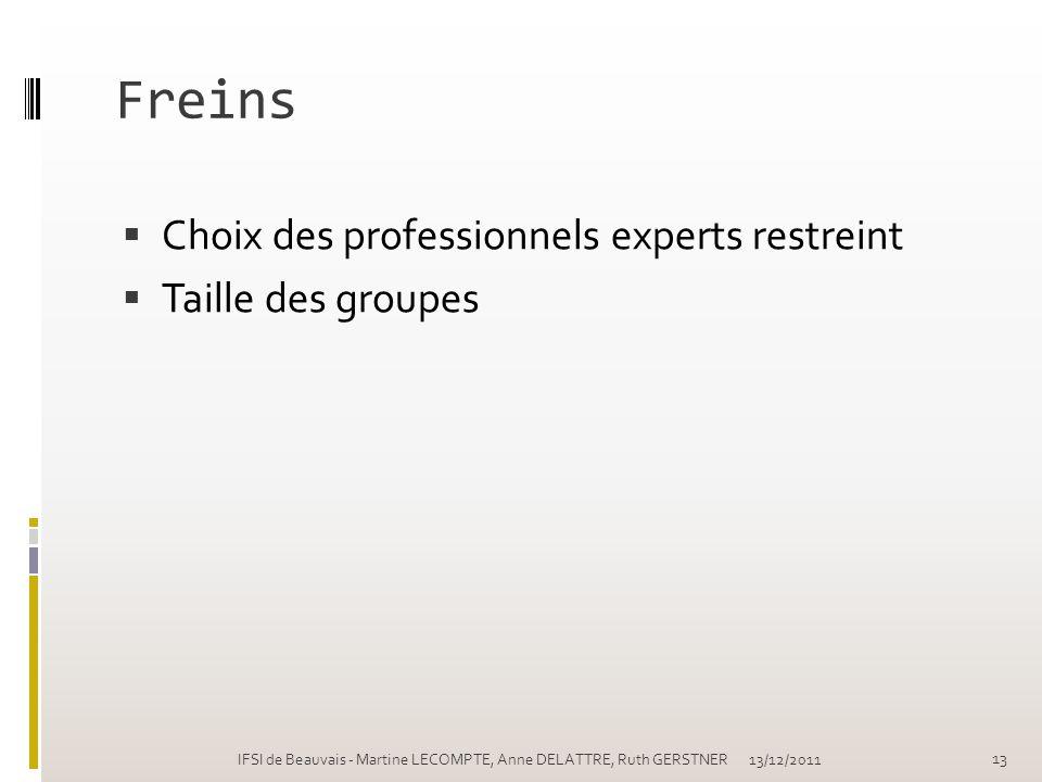 Freins Choix des professionnels experts restreint Taille des groupes 13/12/2011IFSI de Beauvais - Martine LECOMPTE, Anne DELATTRE, Ruth GERSTNER 13