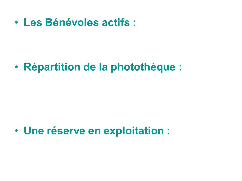 Les Bénévoles actifs : Répartition de la photothèque : Une réserve en exploitation :