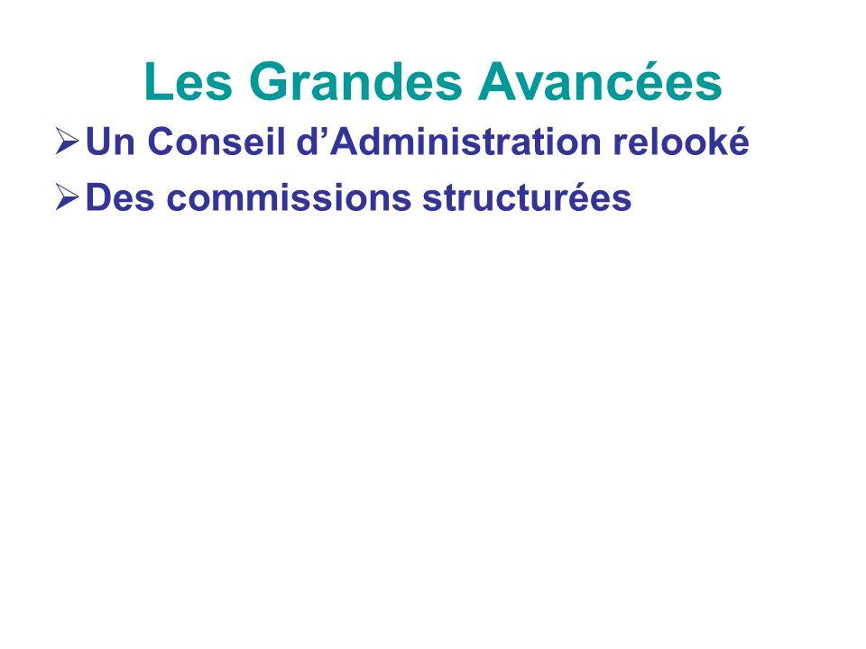 Les Grandes Avancées Un Conseil dAdministration relooké Des commissions structurées