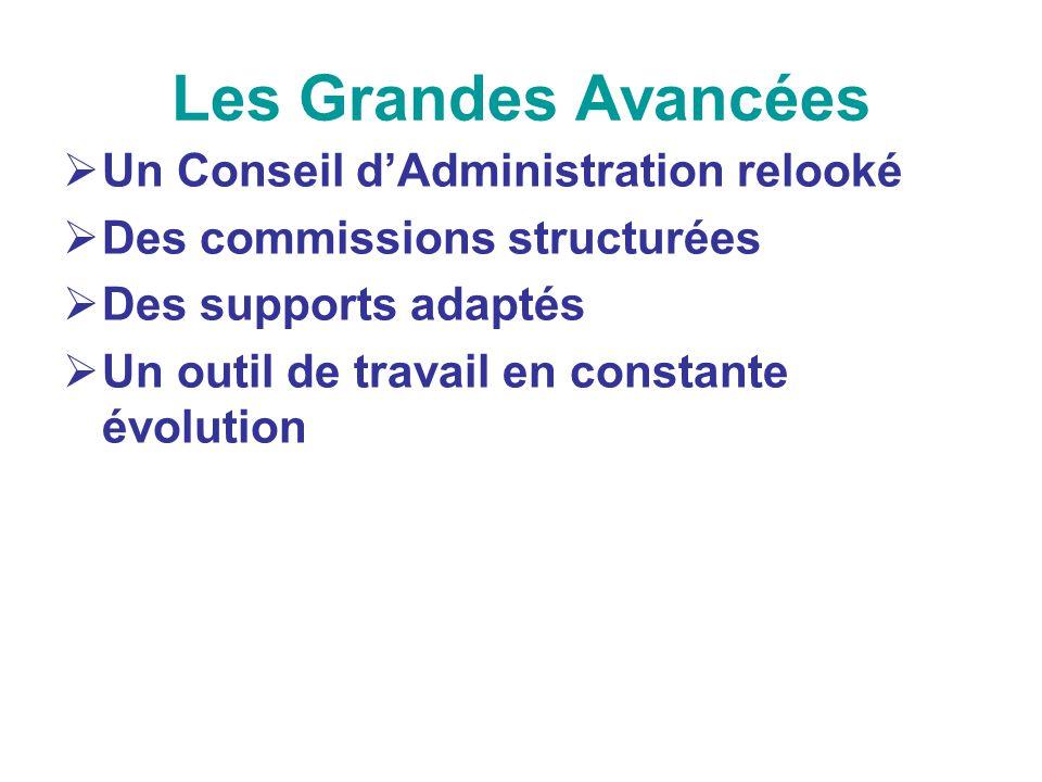 Les Grandes Avancées Un Conseil dAdministration relooké Des commissions structurées Des supports adaptés Un outil de travail en constante évolution