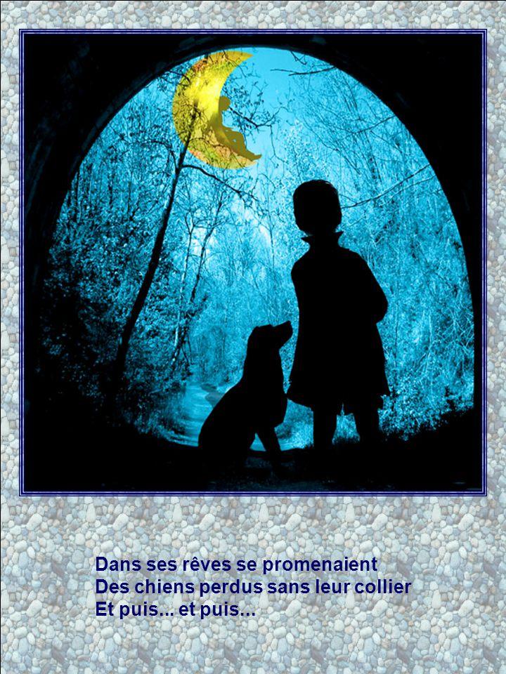 Dans ses rêves se promenaient Des chiens perdus sans leur collier Et puis... et puis...