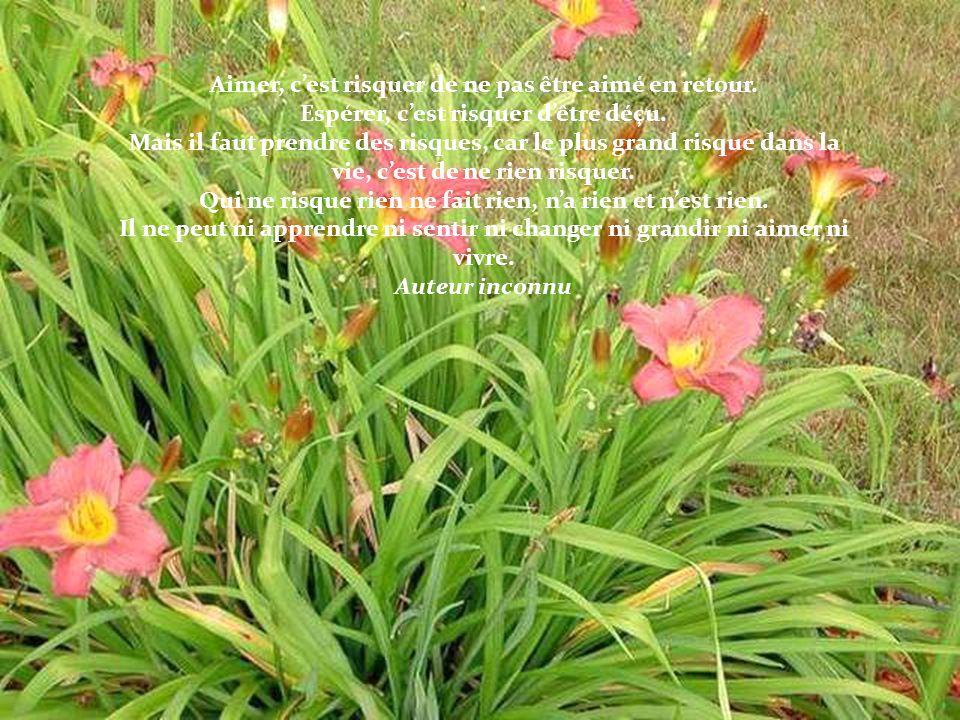 Les projets audacieux naissent de lintérieur. Eudora Welty