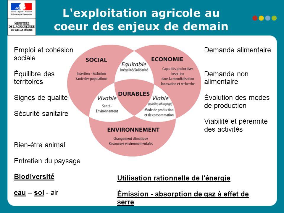 Colloque emploi et compétence - 5/02/09 L'actualité de la Certification environnementale et de la performance énergétique des exploitations agricoles