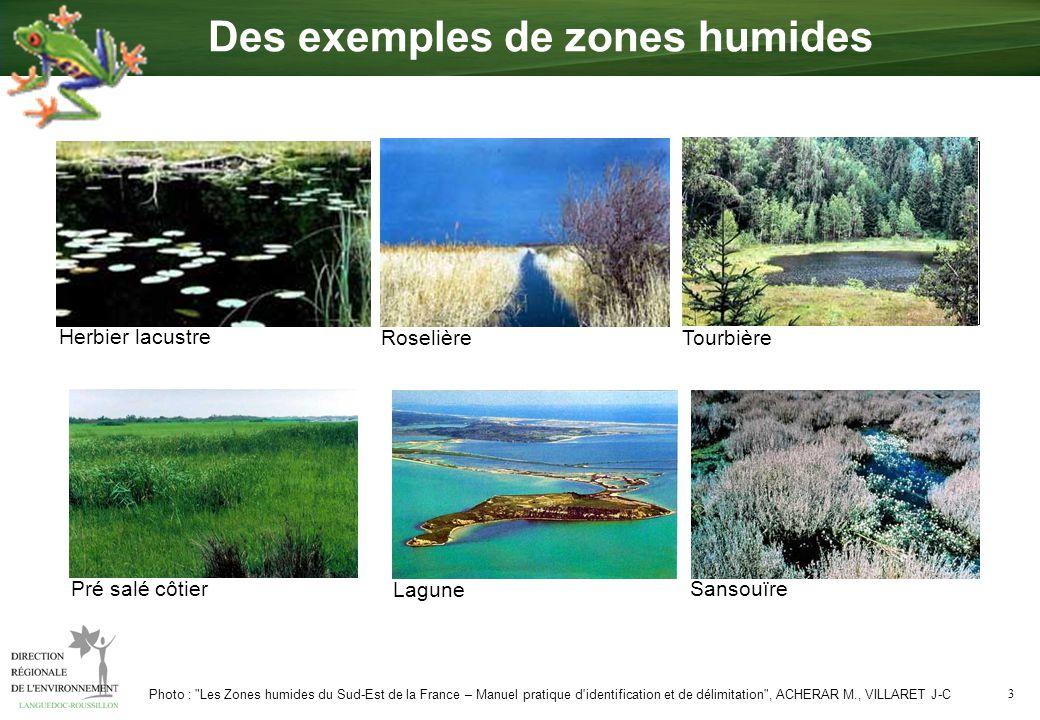 4 Rivières, Retenues, Lacs La zone humide joue un rôle d interface entre la terre et leau Croquis : Les zones humides et la ressource en eau , guide technique inter agences, Etudes sur l eau n°89 Comment fonctionne une zone humide .