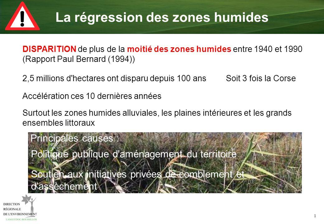 1 La régression des zones humides DISPARITION de plus de la moitié des zones humides entre 1940 et 1990 (Rapport Paul Bernard (1994)) Principales caus