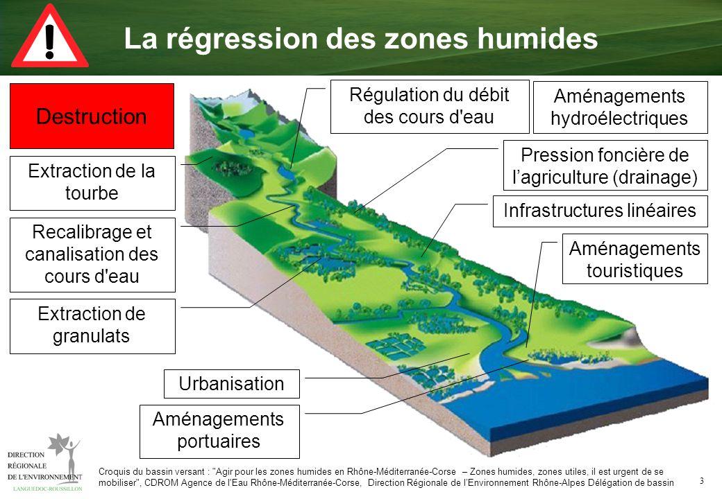 3 Destruction Pression foncière de lagriculture (drainage) Croquis du bassin versant :