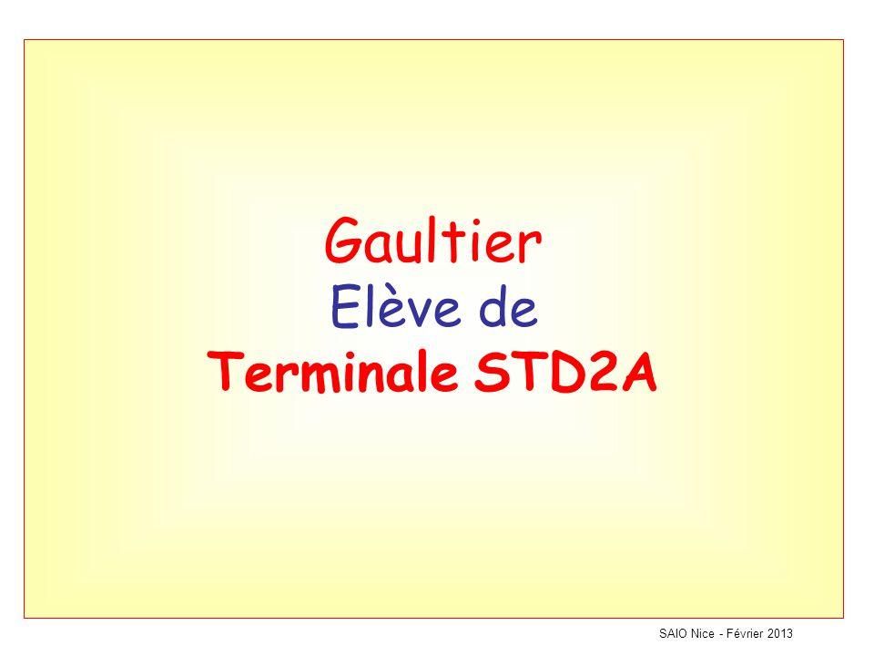 Gaultier Elève de Terminale STD2A SAIO Nice - Février 2013