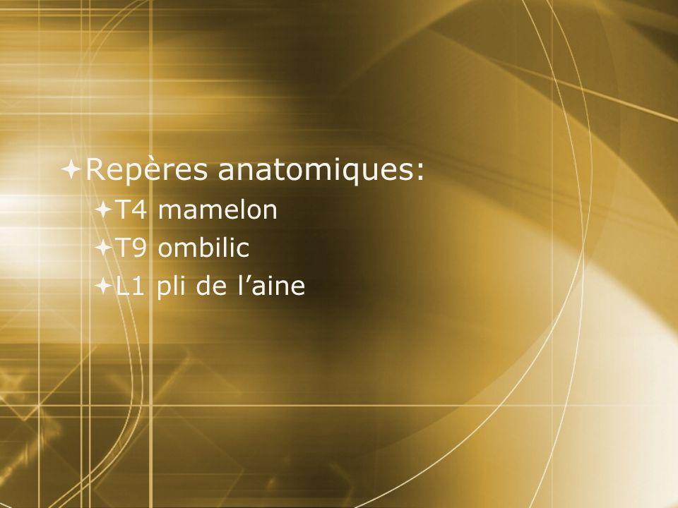 Repères anatomiques: T4 mamelon T9 ombilic L1 pli de laine Repères anatomiques: T4 mamelon T9 ombilic L1 pli de laine