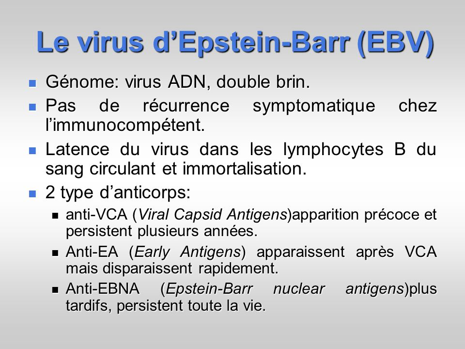 Le virus dEpstein-Barr (EBV) Génome: virus ADN, double brin. Génome: virus ADN, double brin. Pas de récurrence symptomatique chez limmunocompétent. Pa