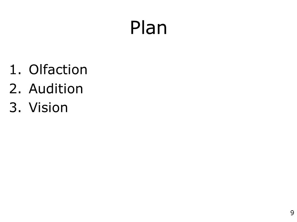 9 Plan 1.Olfaction 2.Audition 3.Vision