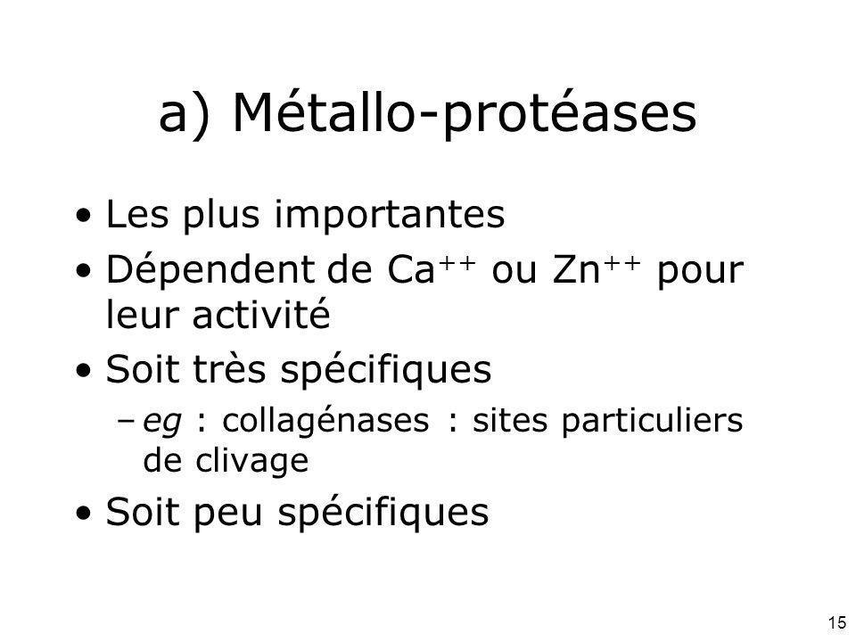 15 a) Métallo-protéases Les plus importantes Dépendent de Ca ++ ou Zn ++ pour leur activité Soit très spécifiques –eg : collagénases : sites particuli