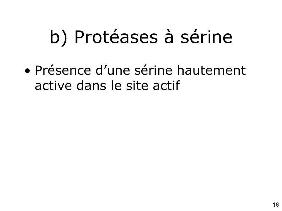 16 b) Protéases à sérine Présence dune sérine hautement active dans le site actif