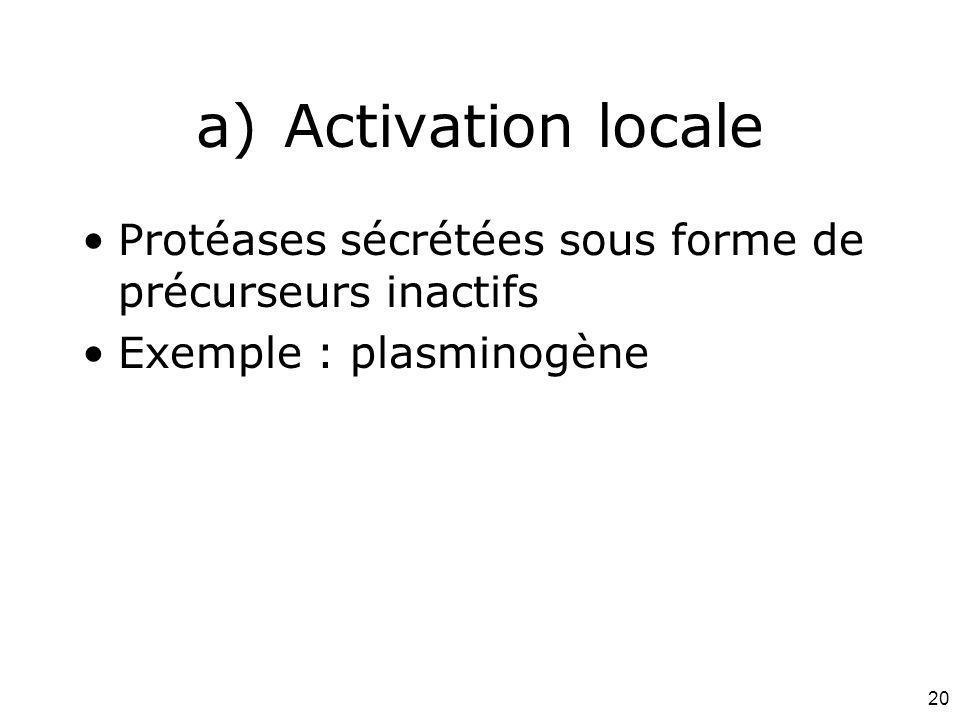 20 a)Activation locale Protéases sécrétées sous forme de précurseurs inactifs Exemple : plasminogène