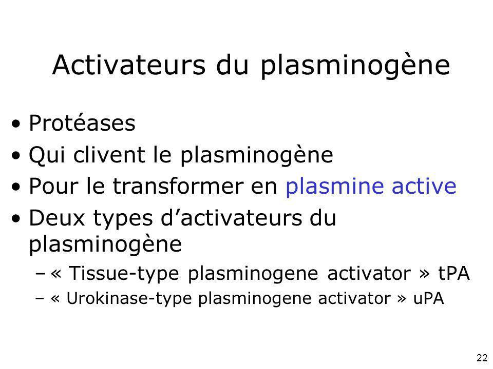 22 Activateurs du plasminogène Protéases Qui clivent le plasminogène Pour le transformer en plasmine active Deux types dactivateurs du plasminogène –«