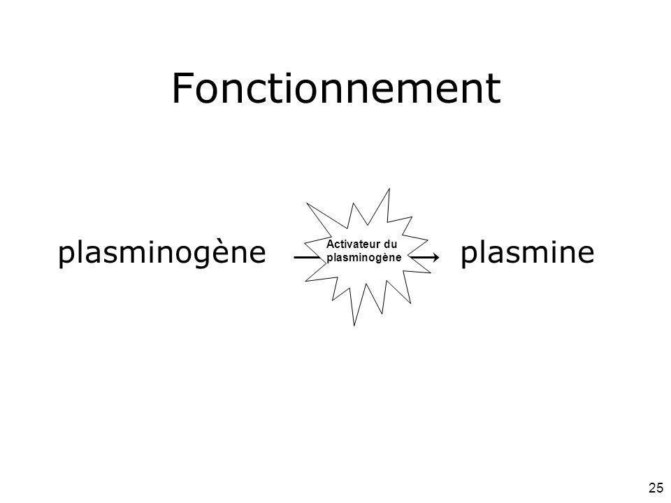 25 plasminogèneplasmine Fonctionnement U-PA Activateur du plasminogène