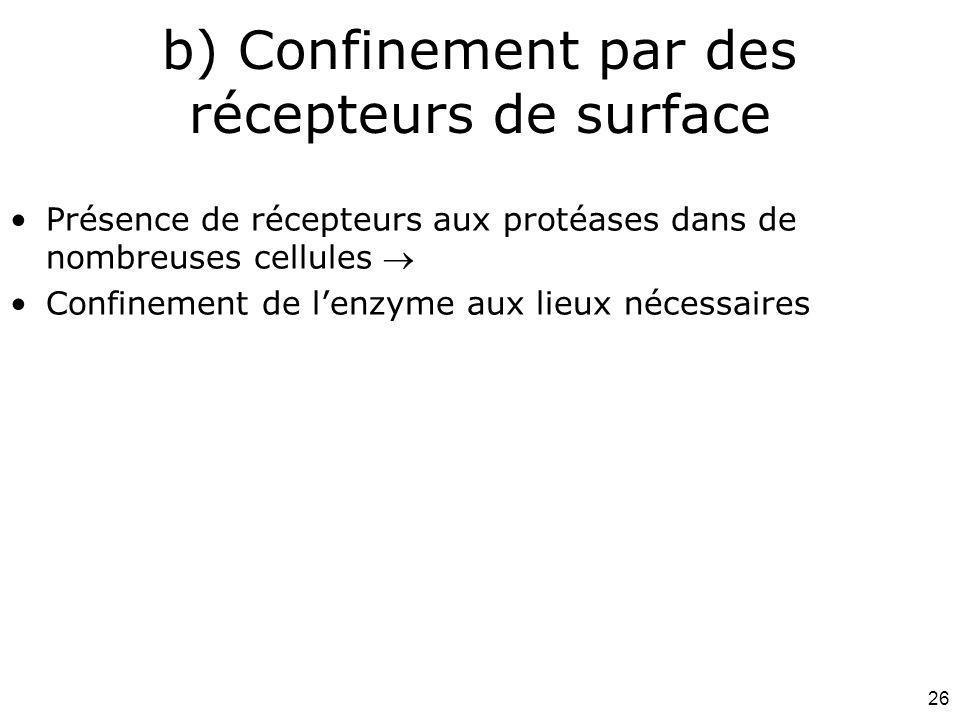 26 b) Confinement par des récepteurs de surface Présence de récepteurs aux protéases dans de nombreuses cellules Confinement de lenzyme aux lieux néce