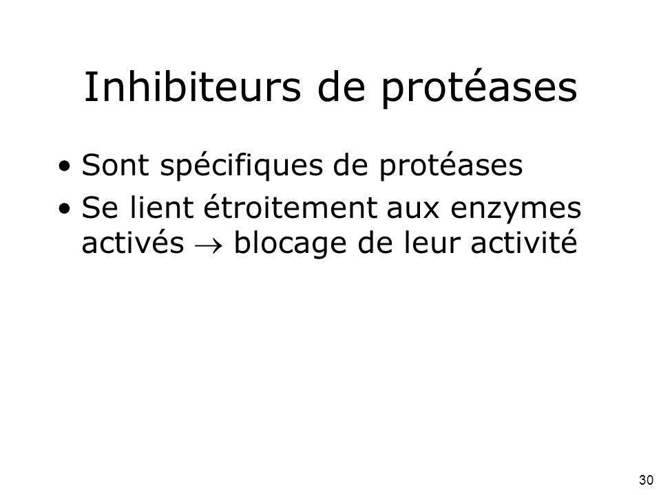 30 Inhibiteurs de protéases Sont spécifiques de protéases Se lient étroitement aux enzymes activés blocage de leur activité