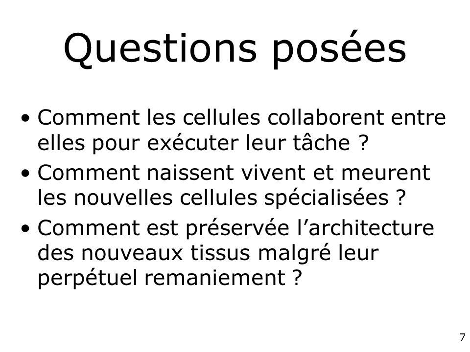 7 Questions posées Comment les cellules collaborent entre elles pour exécuter leur tâche ? Comment naissent vivent et meurent les nouvelles cellules s